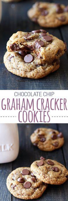 Chocolate Chip Graham Cracker Cookies - Ultra CHEWY and soft! Homemade  graham cracker cookie loaded