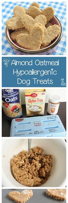 11 homemade hypoallergenic dog treat recipes sensitivity 11 homemade hypoallergenic dog treat recipes sensitivity allergies and homemade forumfinder Images
