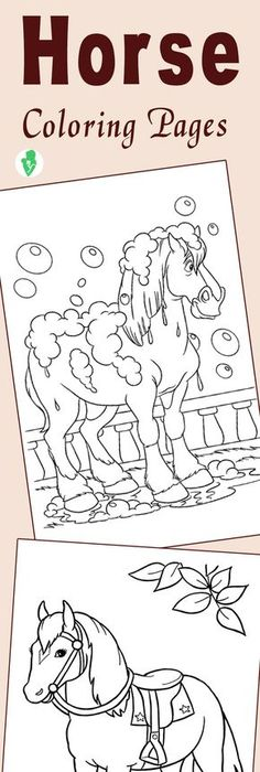 Top 48 Free Printable Horse Coloring Pages Online Shire horse - copy zebra coloring pages free printable