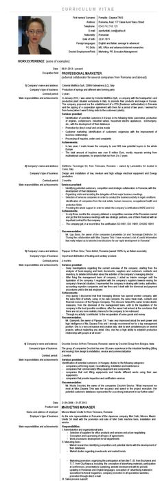 1 cv structure  how to write the cv  1 1 curriculum vitae