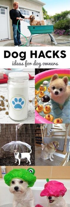 Plastic home use pet dog cat washing shower grooming bath tub dog hacks solutioingenieria Gallery