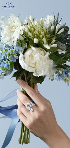 The new collectable Joséphine Aigrette rings.