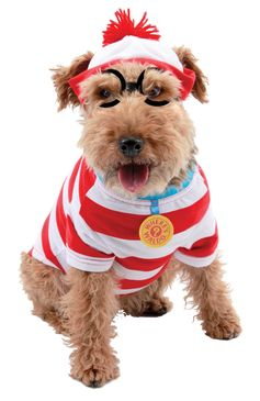 WHERE'S WALDO WOOF DOG KIT SM