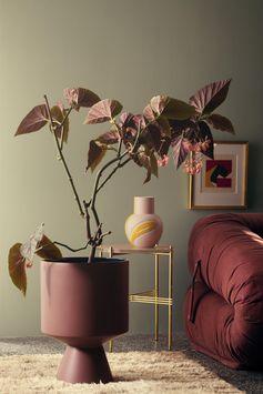 bungalow5_kahler-flora