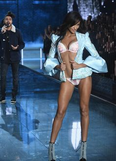 The Looks We Loved From the 2015 Victoria's Secret Fashion Show | Gracie Carvalho
