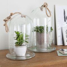 Cloche en verre transparente avec finition corde