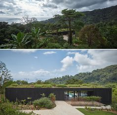 A modern house with a burnt wood facade and a lush green roof.