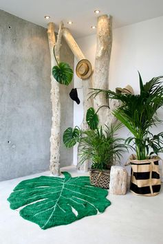 tapis monstera déco jungle ambiance tropicale