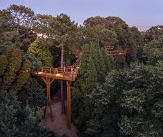 A Treetop Canopy Walk In Portugal Provides A Unique View Of The Trees