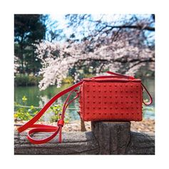 Wishing you Happy Holidays! Elegance and nature blend together: the red Tod's Diodon Bag as seen by Stefano Guindani. #sakura #cherryblossom #TodsDiodonBag