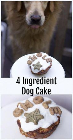 Impossibly Easy Four Ingredient Dog Cake for One Homemade Dog Friendly Cakes #dogfood