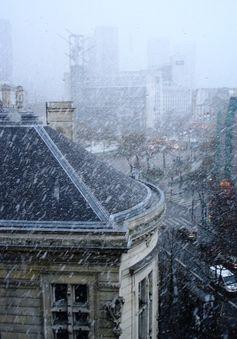 今日のパリは大雨!