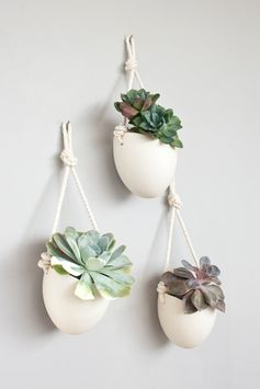 Ensemble de porcelaine et coton 3 et planteurs par lightandladder