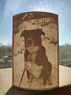 Kimba the dog lithophane by Wulthan #prusai3 #practical #prusamini
