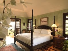 Master Bedroom - A light green could be a potential wall color. I may prefer going for a more mint green color.