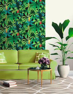 Du papier peint Perroquet vert pour le salon et une déco tropicale !