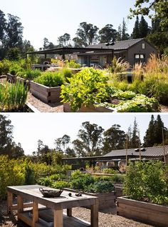 A modern farmhouse with raised vegetable gardens.
