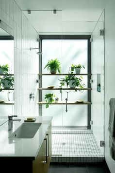 In this modern bathroom, wood shelves against a frosted window provide a place to display plants in the shower. #ModernBathroom #ShowerShelves #ShowerWithPlants #Plants #Shelving #BathroomIdeas