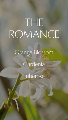 With an intoxicating melody of Orange Flower and Gardenia, Beautiful Belle captures the whirlwind romance of love. #LoveBreaksAllRules