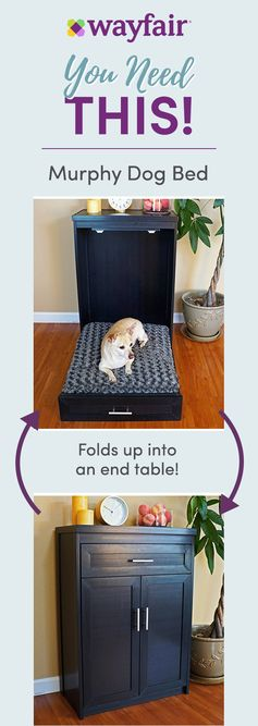 You Need This! Sign up for access to exclusive sales and new arrivals every day! Finally, a dog bed that saves space AND keeps your home tidy. Shop the best prices on multifunctional furniture that does double. Plus, enjoy FREE shipping on all orders over $49 at Wayfair!