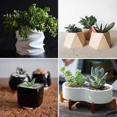 Modern succulent pots to display your tiny house plants.
