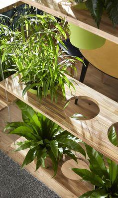 Rideau végétal entre le salon et la salle à manger Convier la nature chez soi peut aussi être l'occasion de lui donner une double fonction. Ici, les plantations assurent un rôle de paravent en isolant visuellement l'espace salle à manger du reste de la pièce.  #leroymerlin #pot #plante #planche #diy #ideedeco #madecoamoi