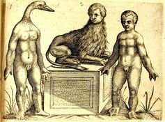 innercurtain:  Auteur de l'ouvrage: LICETI, Fortunio Ouvrage: De monstrorum caussis, natura et differentiis libri duo Edition: Padoue: P. Frambotti, 1634