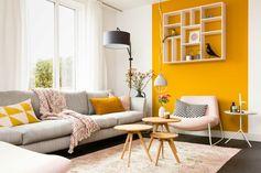 une bande de peinture ocre sur un pan de mur, salon élégant de style scandinave, déco rose pastel et jaune moutarde