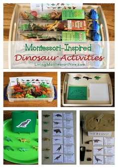 Montessori-inspired activities using dinosaur replicas - along with links to roundup posts with even more dinosaur activities for preschoolers on up.