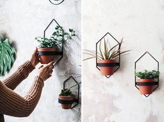 These modern wall planters, which come in a variety of sizes and shapes, have simple yet minimalist designs, that hold a single pot and can display plants like cacti, vines, and succulents. #ModernWallPlanter #WallPlanter #HomeDecor #MinimalistPlanter