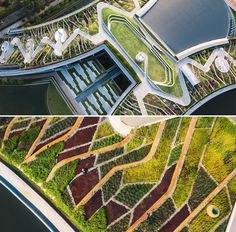 A urban farm is located on a rooftop in Thailand.