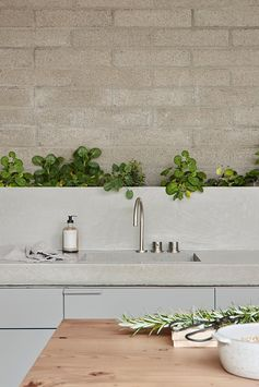 A modern grey kitchen with a concrete countertop, wood island, a a row of plants against the wall.