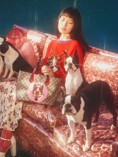 Celebrating the Year of the Dog, with a special Gucci collection featuring the faces of Orso and Bosco, the Boston terriers of Gucci's Creative Director Alessandro Michele and photographed by Petra Collins. Art director: Christopher Simmonds