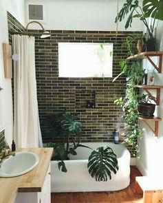 Minus the plants