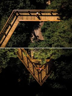 A treetop canopy walk weaves it way through the trees for amazing views.