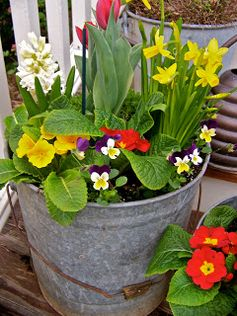 What a cute idea for a porch planter for spring!  Check out the Sweet Memories blog for more info.