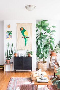 Home tour appartement New-Yorkais à Brooklyn au look bohème.Tenture au mur perroquet.Cactus et autres plantes. Tapis ...