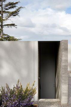 Modern house with black door.