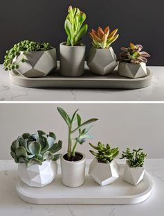 Green Begonia has created a collection of small modern concrete planters that are ideal for succulents and cacti. #ConcretePlanters #Succulents #SucculentPlanters #Cacti #CactiPlanters #ModernHomeDecor #DecorIdeas #PlanterWithTray
