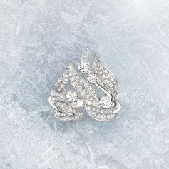 The new Laurier Precious Jewellery collection celebrates the symbolic plant that has been a continuous presence in the Maison's creations. Reinterpreted in diamonds and white gold, this glorious laurel serves to magnify contemporary femininity.