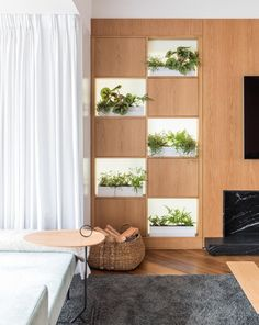 Living Room Shelving Designed For Plants Instead Of Books