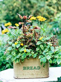 Add country or cottage charm to your landscape with planters made from antique bread boxes.