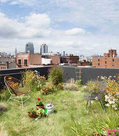 rooftop garden, bklyn, ny