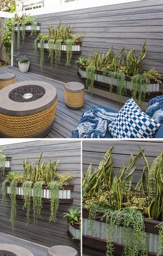 On the wall of this fence are three custom-designed and made corrugated steel and wood planters, that are filled with sansevieria and senecio with agave, creating a variety of heights and adding a softness to the wall. #OutdoorPlanters #WallPlanters #FencePlanters #Landscaping #SideYard