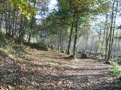 Fall on Lattari Mountains.