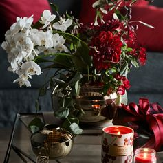 H&M HOME | Orchids are perfect for all seasons, though Cinnamon Spice scented candles are best during winter. Get the holiday decorations that suit your home, in store and online.