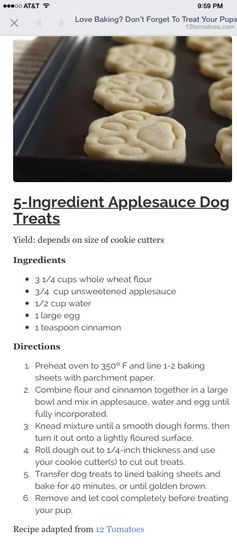 Applesauce dog treats