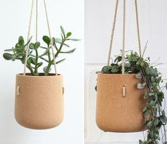 Modern hanging cork planter for cacti and succulents.