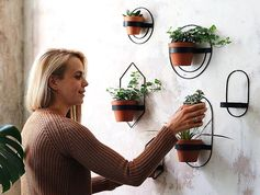 These modern wall planters, which come in a variety of sizes and shapes, have simple yet minimalist designs, that hold a single pot and can display plants like cacti, vines, and succulents. #ModernWallPlanter #WallPlanter #HomeDecor