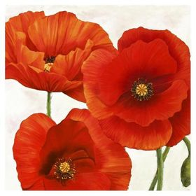 Art Print Poppies I By Luca Villa 38x38in Poppy Flower Art Painting Painting Prints